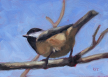 Chickadee-Krista Hasson